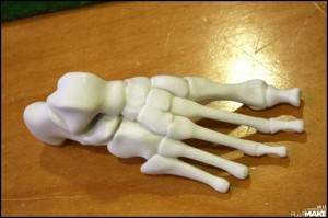 FabLab_Arnhem_foot-bones