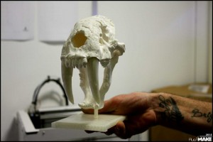 Ultimaker - 3D printed skull